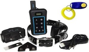 Best E-Collar: Pet Resolve Dog Training Collar with Remote