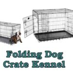 Folding Dog Crate Kennel