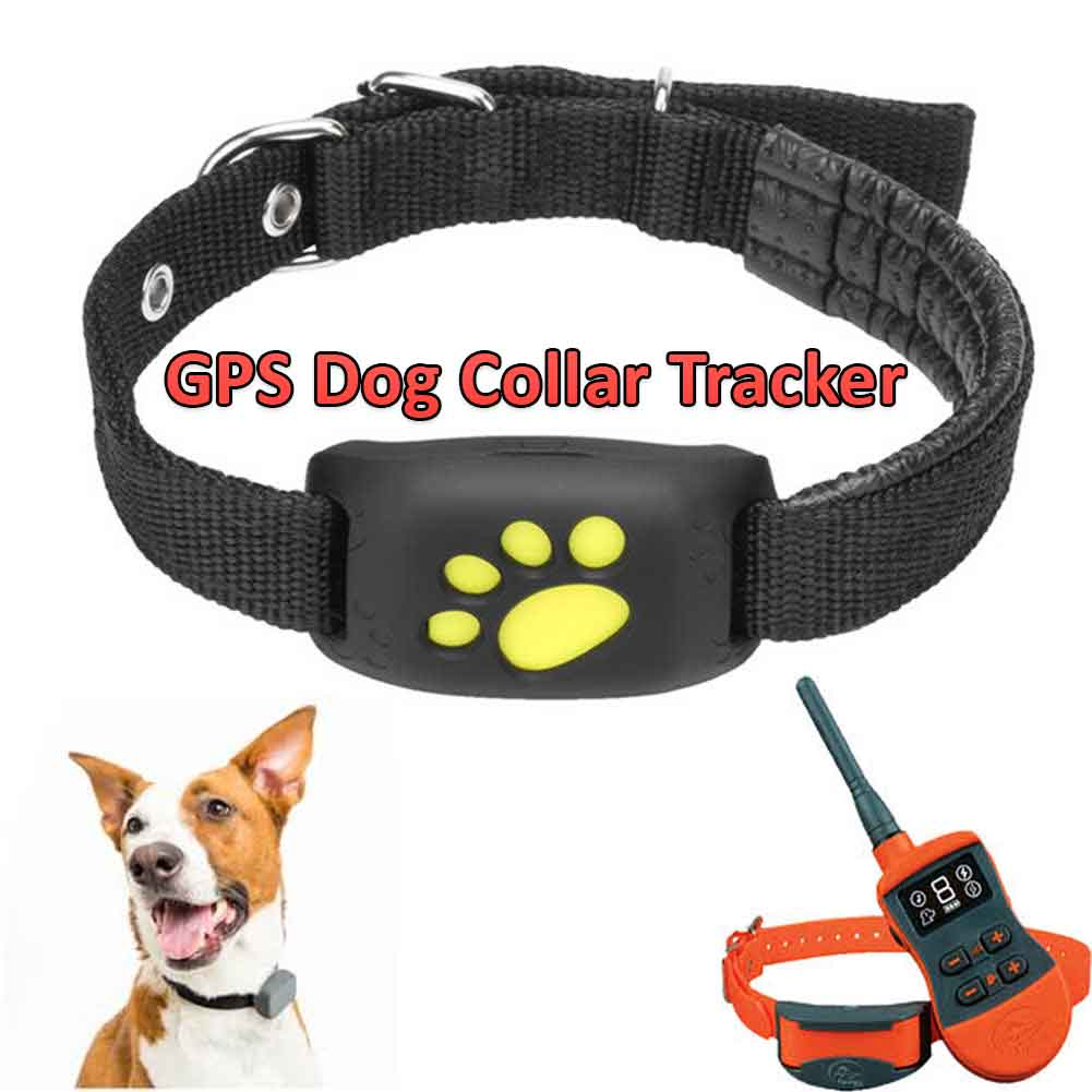 gps dog collar tracker