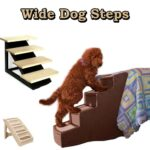 Wide Dog Steps