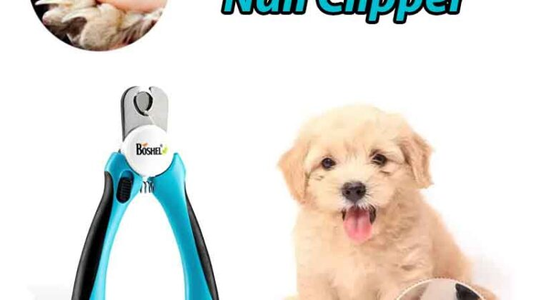 Dog Nail Clipper