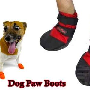 Paw Boots