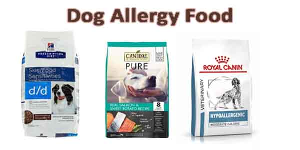 Best Dog Food for Dogs with Allergies