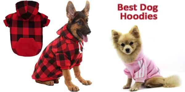 Best Dog Hoodies