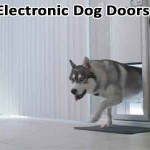 Electronic Dog Doors