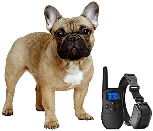 Enrivik Small Dog Shock Collar with Remote for Small Dogs