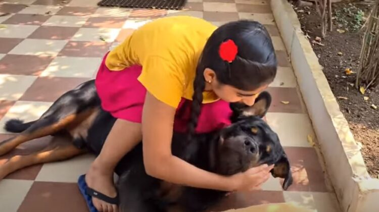 Indian Youtuber shoot video of his dog Rottweiler and earn money