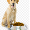 purina beneful puppy food review
