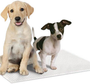 Simple solutions puppy pads 100