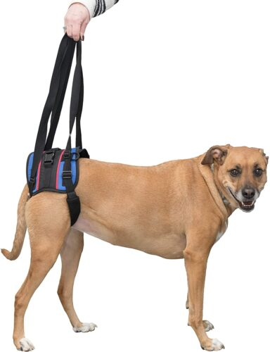 Walkin' Lift Combo Rear Dog Harness for Mobility | Helps Dogs with Arthritis, Senior Dogs and Pets Recovering from Surgery
