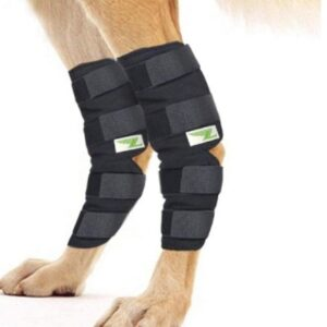 braces for dogs with weak back legs