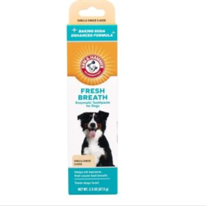 Arm and hammer dog toothpaste vanilla ginger