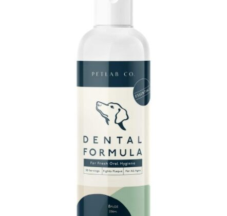 Pet lab company dental wash reviews