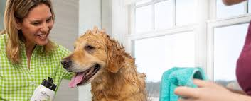Dog Grooming Books – Ultimate Dog Grooming Guide 2021