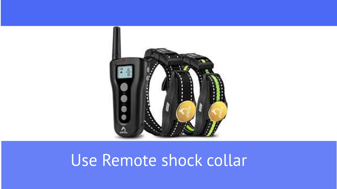 how to use a shock collar on a dog who barks when you are leaving?